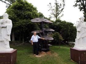 Ganoderma lucidum najboljše zdravilne gobe proti raku skulptura