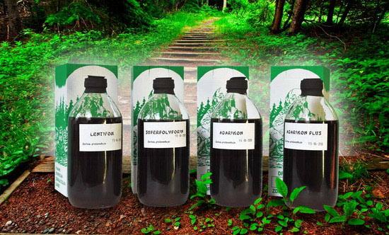rak dojke liječenje ekstrakti ljekovitih gljiva Dr Myko San ispitani na ljudima