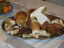 shiitake kao hrana snizuju kolesterol