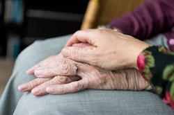 usporiti starenje i stariti zdravo želja je svakoga od nas - a uz zdrav način života ljekovite gljive mogu mnogo pripomoći
